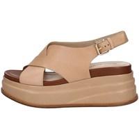 Schuhe Damen Sandalen / Sandaletten Elvio Zanon EN3601 LEDER
