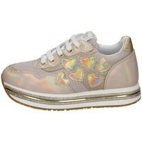 Schuhe Mädchen Sneaker Low Asso AG-10400 GESICHTSPUDER