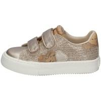 Schuhe Mädchen Sneaker Low Alviero Martini 0865/0662 PLATIN
