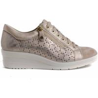 Schuhe Damen Sneaker Low Imac 706320 Beige