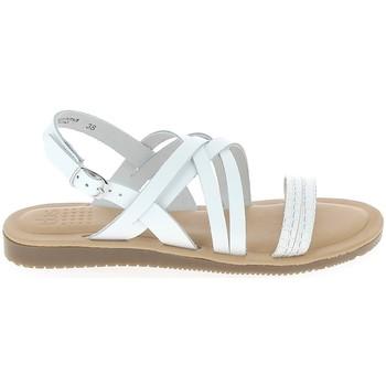 Schuhe Damen Sandalen / Sandaletten TBS Blaudia Croco Blanc Weiss