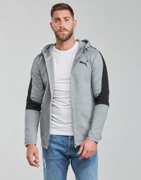 Kleidung Herren Sweatshirts Puma EVOSTRIPE CORE FZ HOODIE Grau / Schwarz