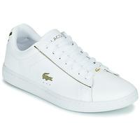 Schuhe Damen Sneaker Low Lacoste CARNABY EVO 0721 3 SFA Weiss