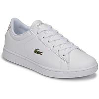 Schuhe Kinder Sneaker Low Lacoste CARNABY EVO BL 21 1 SUJ Weiss