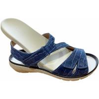Schuhe Damen Sandalen / Sandaletten Calzaturificio Loren LOQ6973blu blu