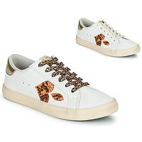 Schuhe Damen Sneaker Low Le Temps des Cerises AUSTIN Weiss / Gold