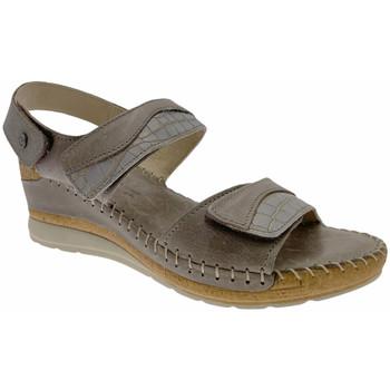 Schuhe Damen Sandalen / Sandaletten Riposella RIP11244marr marrone