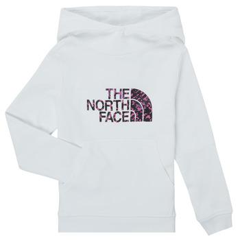 Kleidung Mädchen Sweatshirts The North Face DREW PEAK HOODIE Weiss