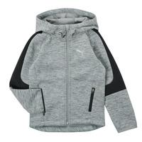 Kleidung Jungen Sweatshirts Puma EVOSTRIPE FZ HOODED JACKET Grau
