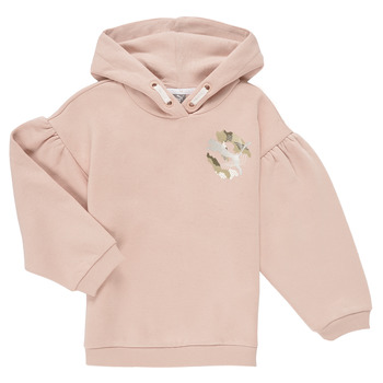 Kleidung Mädchen Sweatshirts Puma ALPHA HOODIE Rose