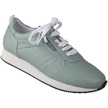 Schuhe Damen Sneaker Low Lei By Tessamino Damenschnürer Nadja Farbe: grün grün