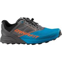 Schuhe Herren Laufschuhe Dynafit Alpine Grau