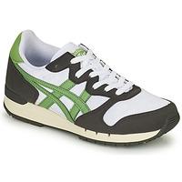 Schuhe Sneaker Low Onitsuka Tiger ALVARADO Grün / Schwarz / Weiss