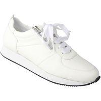 Schuhe Damen Sneaker Low Lei By Tessamino Damenschnürer Nadja Farbe: weiß weiß