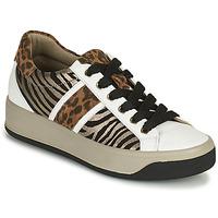 Schuhe Damen Sneaker Low IgI&CO DONNA AVA Weiss / Braun