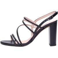 Schuhe Damen Sandalen / Sandaletten Albano 8108 Multicolore