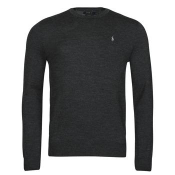 Kleidung Herren Pullover Polo Ralph Lauren AMIRAL Grau