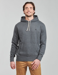 Kleidung Herren Sweatshirts Polo Ralph Lauren OLIVIA Grau