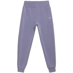 Kleidung Damen Jogginghosen 4F Women's Sweatpants Grau