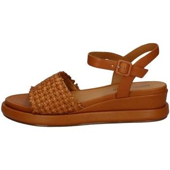 Schuhe Damen Sandalen / Sandaletten Elvio Zanon EN3401 SENF