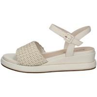 Schuhe Damen Sandalen / Sandaletten Elvio Zanon EN3401 SAHNE