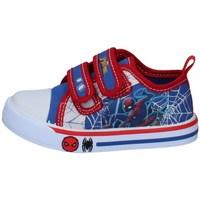 Schuhe Jungen Sneaker Low Spiderman SPP4475-09 BLAU