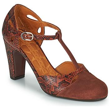 Schuhe Damen Pumps Chie Mihara KUNA Braun