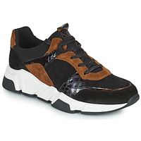 Schuhe Damen Sneaker Low Regard KENO Schwarz / Braun