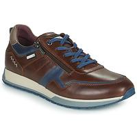 Schuhe Herren Sneaker Low Pikolinos CAMBIL Braun / Blau