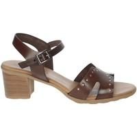 Schuhe Damen Sandalen / Sandaletten Porronet FI2626 Braun