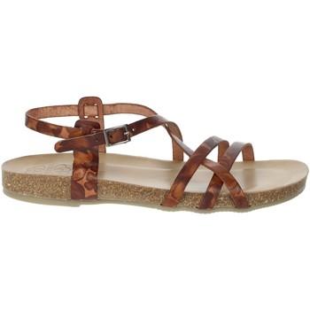 Schuhe Damen Sandalen / Sandaletten Porronet FI2615 Braun Leder