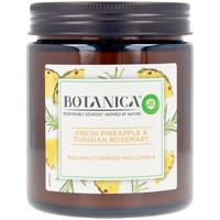 Home Kerzen, Diffusoren Air-Wick Botanica Kerze Pineapple & Tunisian Rosemary 205 Gr 205 g