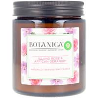 Home Kerzen, Diffusoren Air-Wick Botanica Kerze Rose & African Geranium 205 Gr 205 g
