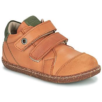 Schuhe Jungen Sneaker High Aster WASHAN Camel / Grün