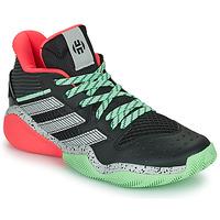 Schuhe Basketballschuhe adidas Performance HARDEN STEPBACK Schwarz / Grau / Grün