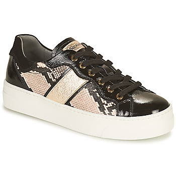 Schuhe Damen Sneaker Low NeroGiardini BETTO Schwarz / Gold