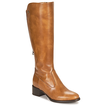 Schuhe Damen Klassische Stiefel NeroGiardini FEVO Cognac