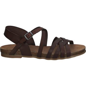 Schuhe Damen Sandalen / Sandaletten Cosmos Comfort Sandalen Braun