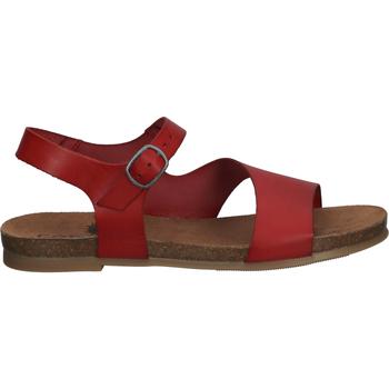 Schuhe Damen Sandalen / Sandaletten Cosmos Comfort Sandalen Rot