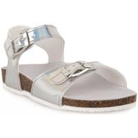Schuhe Jungen Sandalen / Sandaletten Gold Star GHIACCIO Grigio