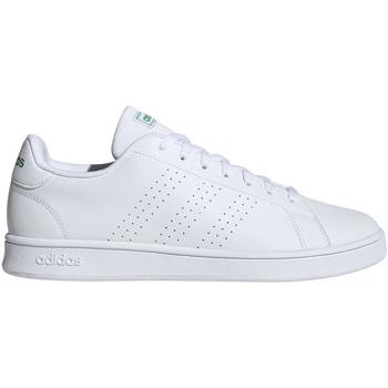 adidas -   Sneaker EE7690
