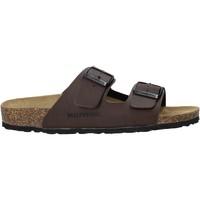 Schuhe Herren Pantoffel Valleverde G51800P Braun