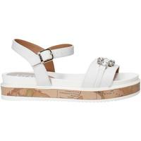 Schuhe Mädchen Sandalen / Sandaletten Alviero Martini 0575 0326 Weiß