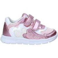 Schuhe Kinder Sneaker Chicco 01065680000000 Rosa