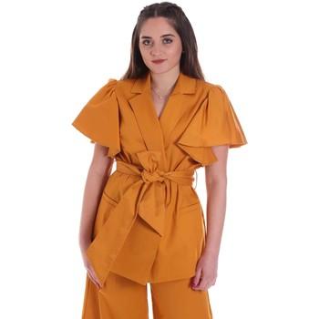 Kleidung Damen Jacken / Blazers Cristinaeffe 0308 2491 Gelb