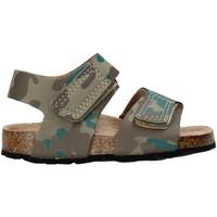 Schuhe Kinder Sandalen / Sandaletten Balducci AG-1558 Braun