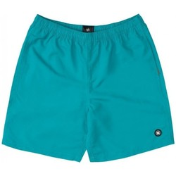Kleidung Jungen Badeanzug /Badeshorts DC Shoes BAÑADOR PISCINA NIÑO DC EDBWS03069 Grün