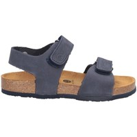 Schuhe Jungen Sandalen / Sandaletten Plakton 125093 Sandalen Kind BLAU BLAU