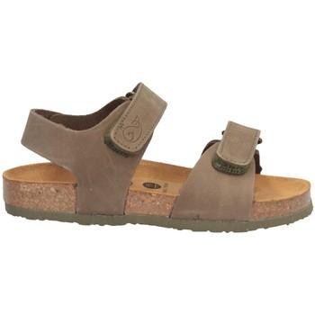 Schuhe Jungen Sandalen / Sandaletten Plakton 125093 Sandalen Kind GRÜN GRÜN
