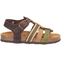 Schuhe Jungen Sandalen / Sandaletten Plakton 125639 Sandalen Kind KAKI KAKI